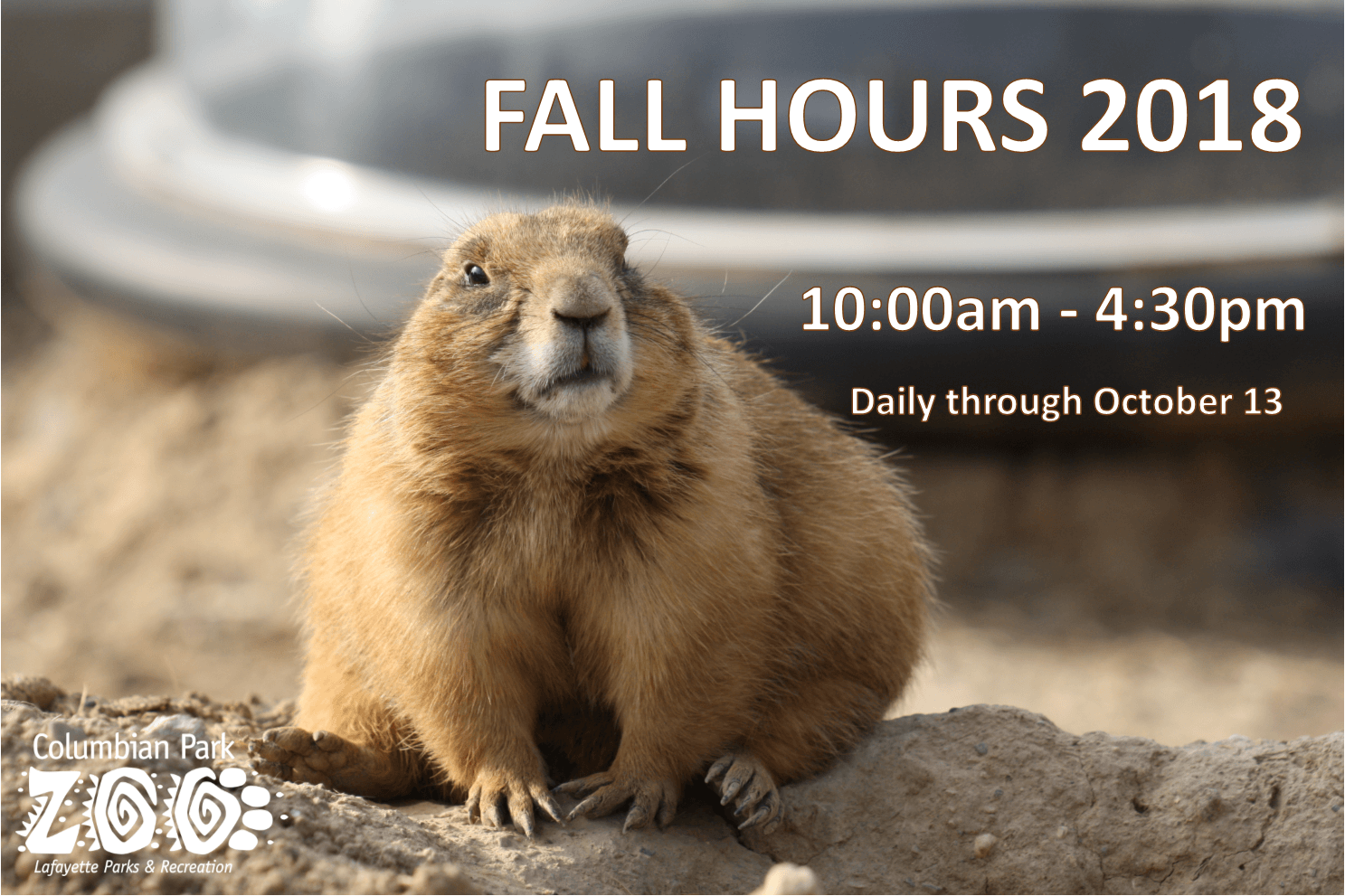 Fall Hours pic