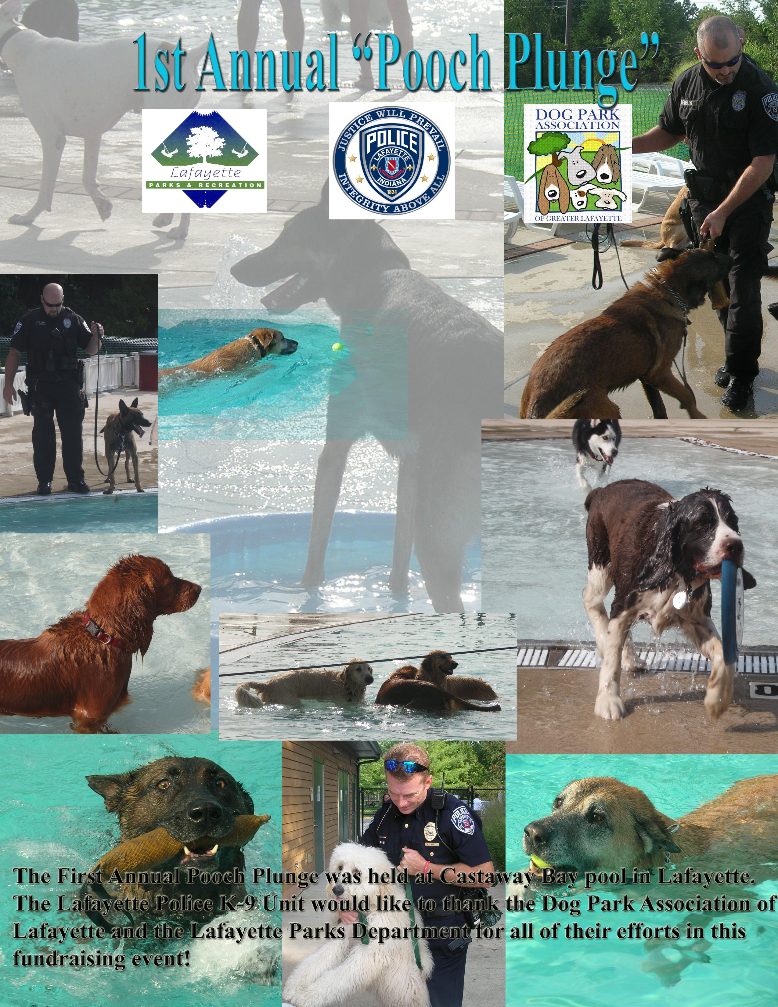 The 1st annual pooch plunge was held at Castaway Bay pool in Lafayette.