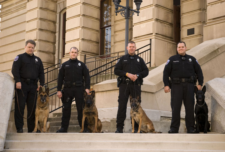 K9 Unit on Steps