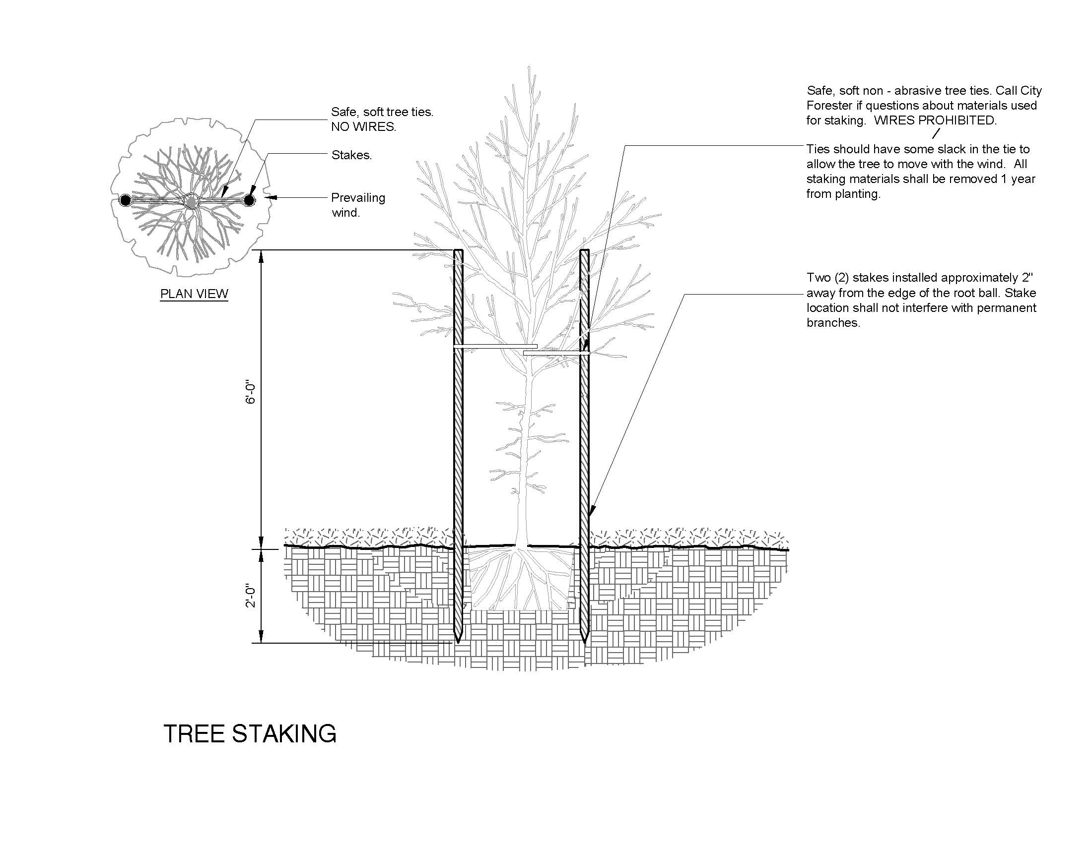 Tree planting pruning and removal lafayette in official website detailstaking pooptronica Image collections