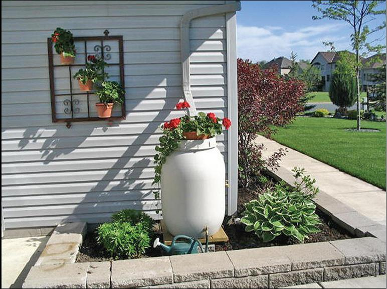 White Rain Barrel Attached to Roof Drainage With Plant in Pot